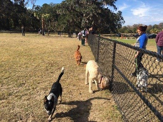 Southside Boulevard Dog Park